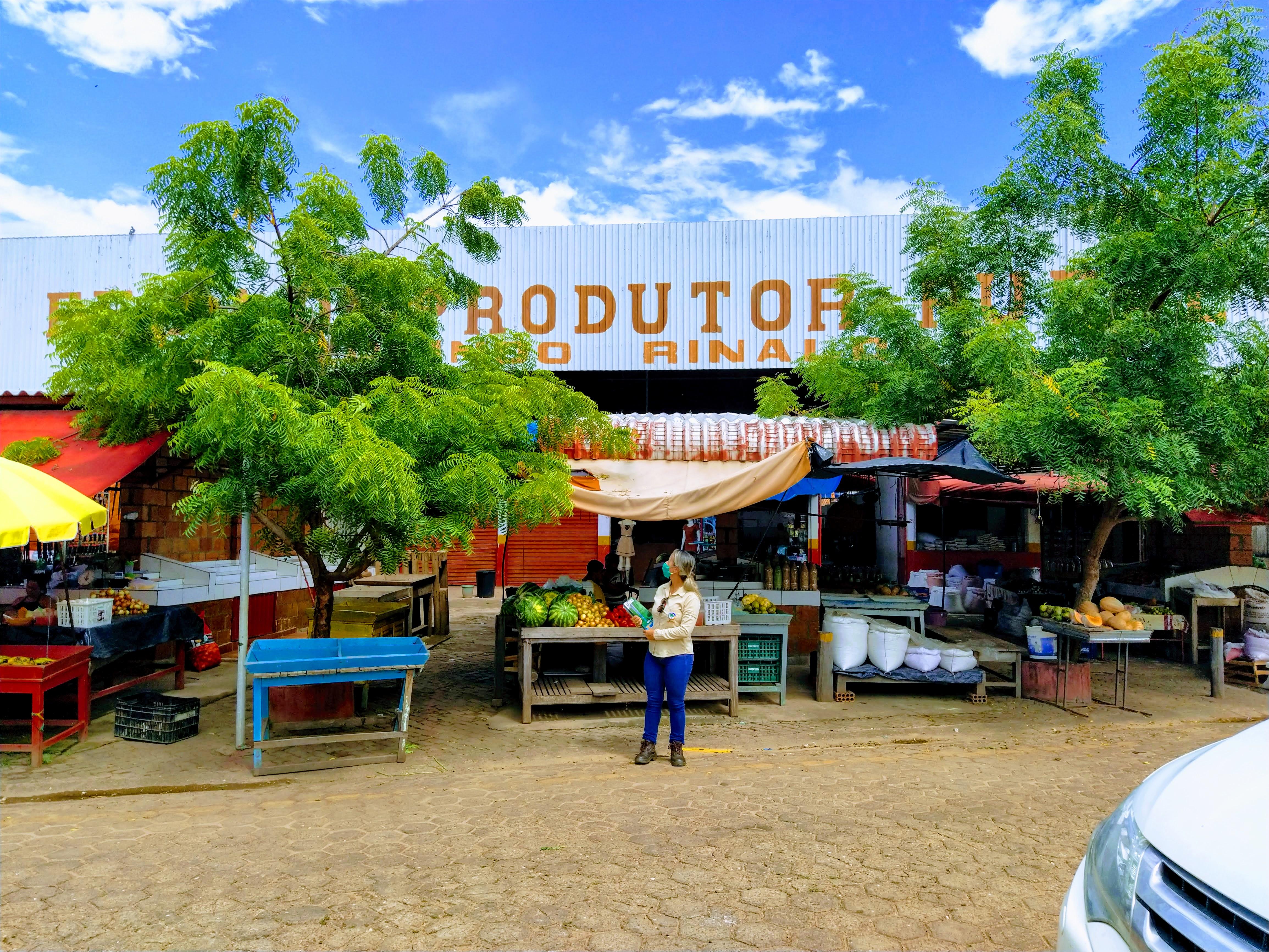 Feira do Produtor Rural - São Domingos